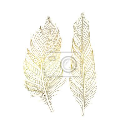 79c7e5a6f6fc74 Fototapeta Złote ptaków ozdobnych piór na białym tle, ręcznie rysowane  elementy dekoracyjne w stylu boho