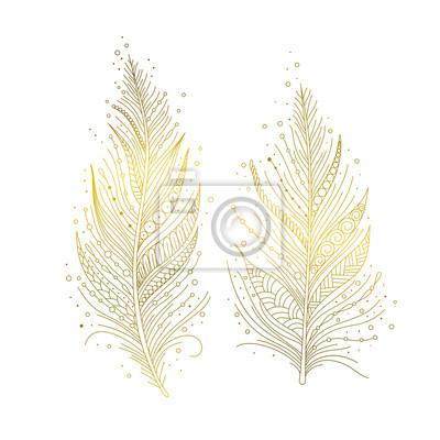 72c5092804e362 Fototapeta Złote ptasie pióra na białym tle, ręcznie rysowane elementy  dekoracyjne w stylu boho.