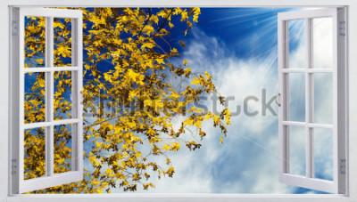 Fototapeta Żółci jesień liście na niebie
