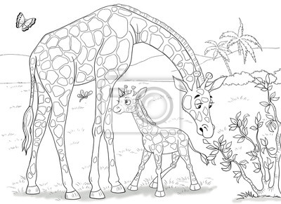 Zoo Zwierzeta Afryki Zyrafy Cute Matki Zyrafa I Jej Dziecka