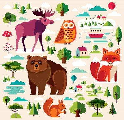 Fototapeta zwierzęta leśne Colletion