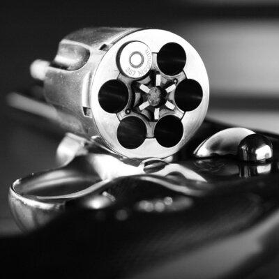 Naklejka 357 Magnum Revolver