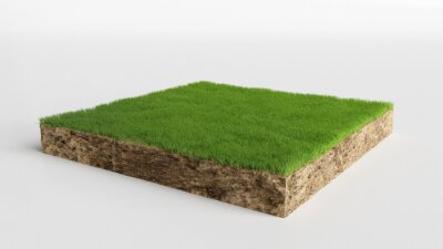 Naklejka 3D cubical grass land with soil geology cross section, 3D Illustration ground ecology isolated on white