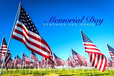 Naklejka A large group of American flags. Veterans or Memorial day display
