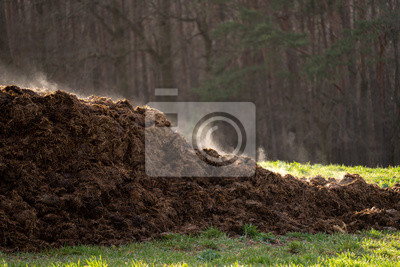 Naklejka A pile of manure on an agricultural field for growing bio products