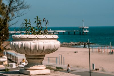 Naklejka A pot of green plants and the Burgas bridge in the background on the Black Sea coast