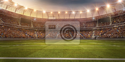 Naklejka A profesional american football arena. Stadium and crowd are made in 3d.