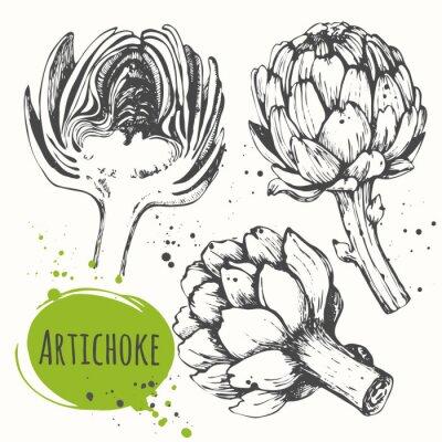Naklejka Aartichoke. Zestaw ręcznie rysowane karczocha. Świeża żywność organiczna.