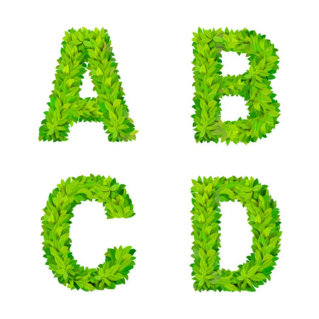 ABC grass leaves letter number elements modern nature placard lettering leafy foliar deciduous vector set. A B C D leaf leafed foliated natural letters latin English alphabet font collection.