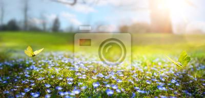 Naklejka abstrakcyjny charakter wiosny Tło; wiosenny kwiat i motyl