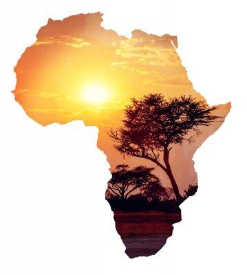Naklejka Afrykański zachód słońca z akacji, mapa Afryki koncepcja