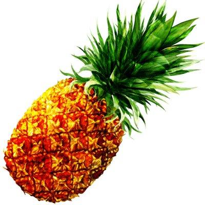 Naklejka akwarela ananas