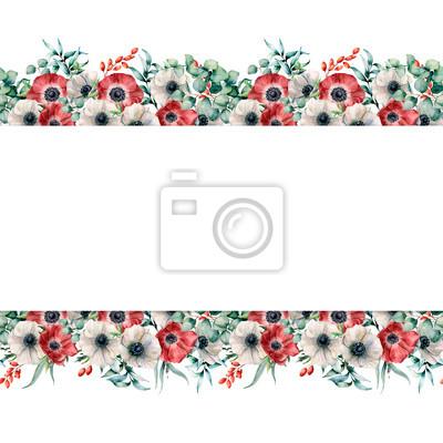 Akwarela bezszwowe transparent z biało -czerwone zawilce. Ręcznie malowane kwiaty z liści eukaliptusa i gałęzi, jagody na białym tle. Kwiecista elegancka ilustracja dla projekta, druk
