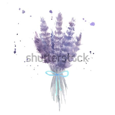 Naklejka Akwarela bukiet lawendy. Szkicuj kwiaty lawendy z niebieską wstążką i plamami akwareli. Ilustracja na białym tle wektor