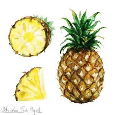 Naklejka Akwarela Food Clipart - Ananas