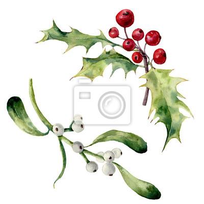 Akwarela Holly i zestaw jemioły. Ręcznie malowane boże element kwiatu na białym tle. Ilustracje z roślinami do projektowania