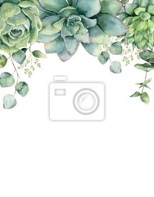 Akwarela karty z sukulentów i liści eukaliptusa. Ręka malująca eukaliptus gałąź, zieleni sukulenty odizolowywający na białym tle. Kwiecista botaniczna ilustracja dla projekta, druku lub tła ,.