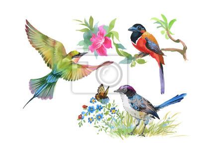 Akwarela kolorowe ptaki i motyle z liści i kwiatów.