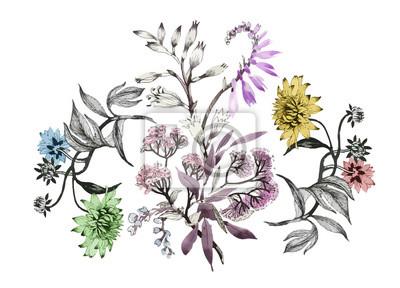 Naklejka Akwarela kompozycja kwiatowa. Zawiera ścieżkę przycinającą. Szybka izolacja. Malowane ręcznie.
