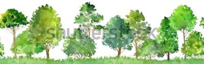 Naklejka akwarela krajobraz z drzew liściastych, sosny, krzewów i trawy, wzór, natura streszczenie tło, granica lasu, ilustracja
