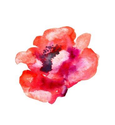 Naklejka Akwarela kwiat maku