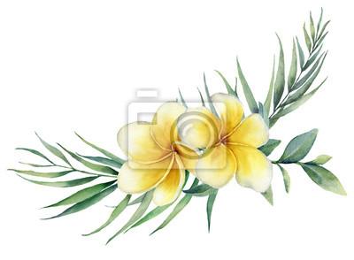 Akwarela kwiatowy bukiet tropikalny z gałąź plumeria i palmy. Ręka malował frangipani, eukaliptus odizolowywający na białym tle. Ilustracja do projektowania, drukowania, tkaniny lub tła.