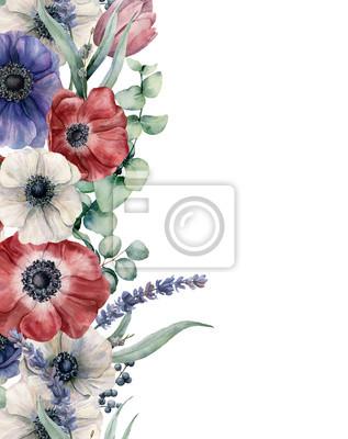 Akwarela kwiatowy karty z zawilce czerwony, niebieski biały. Ręcznie malowany bukiet z czerwonym, białym i niebieskim anemone, liście eukaliptusa i oddział, lawenda, tulipan, jagody na białym tle.