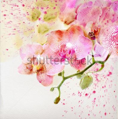 Naklejka Akwarela malarstwo, kwiatowy tło