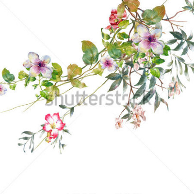 Naklejka akwarela malarstwo liści i kwiatów, na białym tle