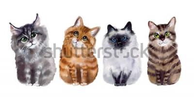 Naklejka Akwarela słodkie śmieszne koty na białym tle
