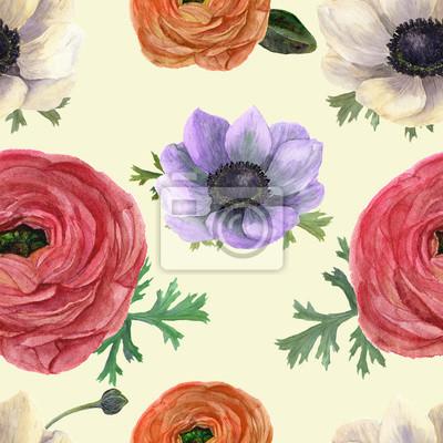 Akwarela szwu z Ranunculus i zawilce. Ręcznie rysowane kwiatu Ilustracja z rocznika tle. Ilustracje z roślinami. Projektowania, tekstyliów i tła.