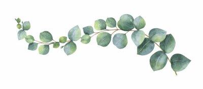 Naklejka Akwarela wektor wieniec z zielonych liści eukaliptusa i oddziałów.