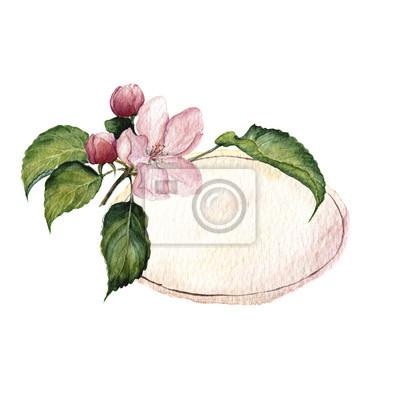 Akwarela winieta zz kwiatów jabłoni i liści. ilustracje z roślinami