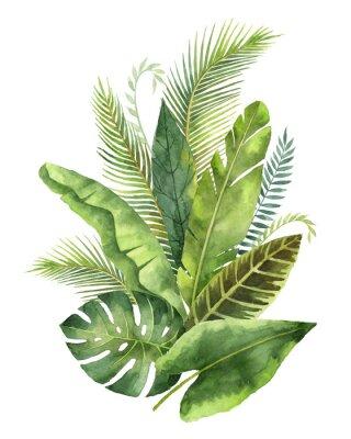 Naklejka Akwarele bukiet tropikalnych liści i gałęzi wyizolowanych na białym tle.