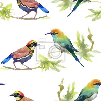 Akwarele ręcznie rysowane bez szwu deseń z tropikalnych letnich kwiatów i ptaków egzotycznych