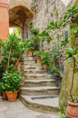Naklejka Aleja w Włoski starego miasta Liguria Włochy
