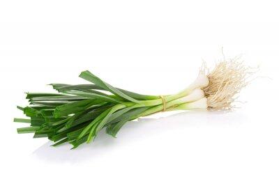 Naklejka Allium porrum na białym tle