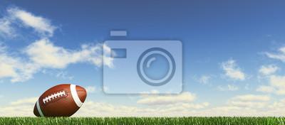 Naklejka American football ball, na trawie, z puszystym niebo couds w t.
