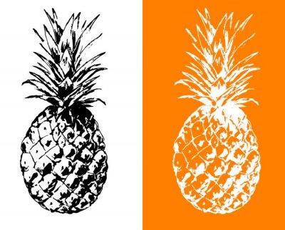 Ananas ilustracji wektorowych wyciągnąć rękę, zarys, stylizowane symbol czerni i bieli