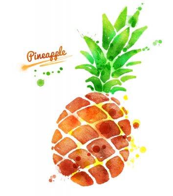 Naklejka Ananas z odpryskami farby.