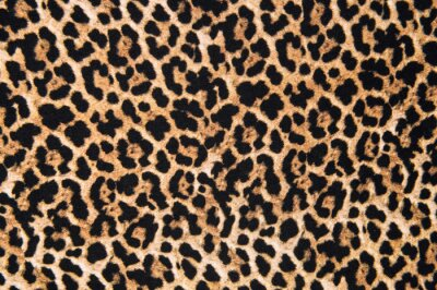 Naklejka Animal print textile texture. Leopard fur background