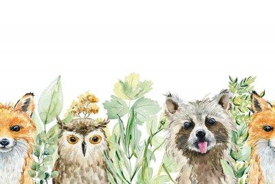 Naklejka Animals watercolor illustration