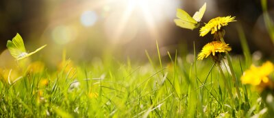Naklejka art abstract spring background or summer background with fresh grass