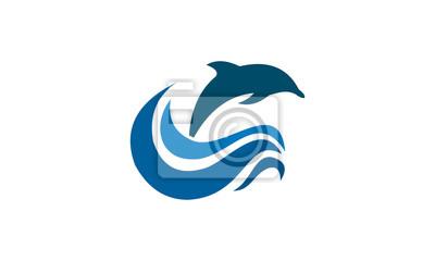 atrakcyjna delfina w morzu