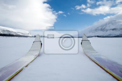 Auf skiern w Laponii