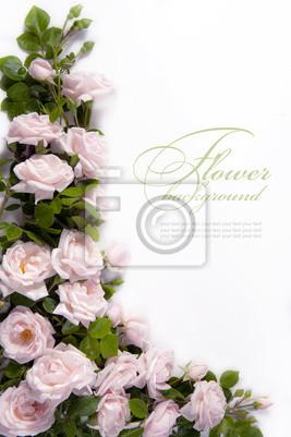 Background kwiat Art dla karty