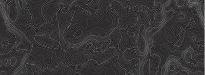 Naklejka Background of the topographic map. Topographic map lines, contour background. Geographic abstract grid. EPS 10 vector illustration.