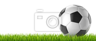 Ballon de football vectoriel 14