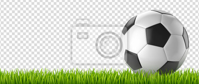 Ballon de football vectoriel 27