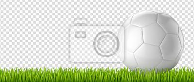 Ballon de football vectoriel 28